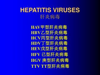 HEPATITIS VIRUSES 肝炎病毒