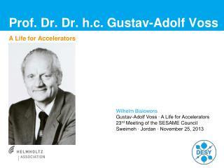 Prof. Dr. Dr. h.c. Gustav-Adolf Voss