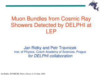Muon Bundles from Cosmic Ray Showers Detected by DELPHI at LEP