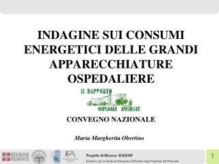 INDAGINE SUI CONSUMI ENERGETICI DELLE GRANDI APPARECCHIATURE OSPEDALIERE  CONVEGNO NAZIONALE