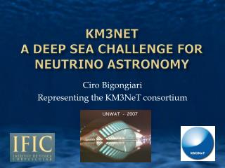 KM3NeT  a Deep Sea Challenge for neutrino astronomy