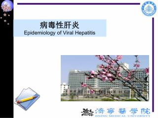 病毒性肝炎 Epidemiology of Viral Hepatitis