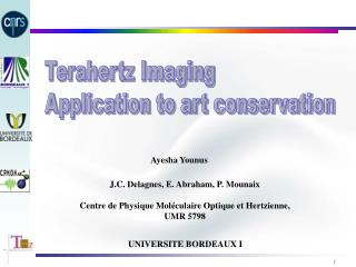 Terahertz Imaging Application to art conservation