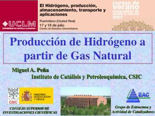 Producción de Hidrógeno a partir de Gas Natural