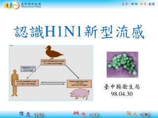 認識 H1N1 新型流感