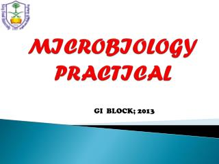 MICROBIOLOGY PRACTICAL