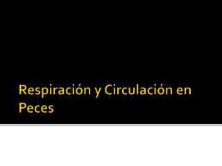 Respiración y Circulación en  Peces
