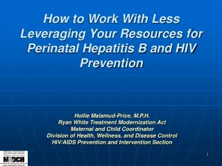 How to Work With Less Leveraging Your Resources for Perinatal Hepatitis B and HIV Prevention