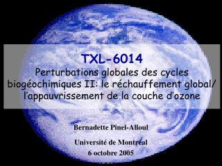Bernadette Pinel-Alloul Université de Montréal 6 octobre 2005