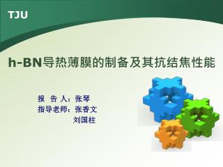报  告 人:张琴 指导老师:张香文               刘国柱