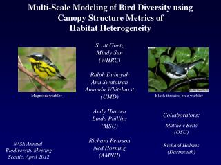 Multi-Scale Modeling of Bird Diversity using Canopy Structure Metrics of Habitat Heterogeneity