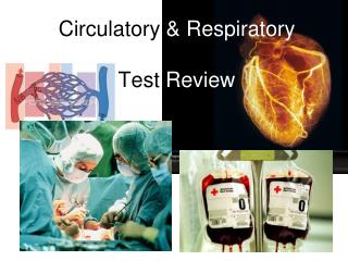 Circu latory  & Respiratory Test  Review
