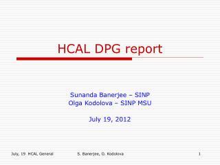 HCAL DPG report