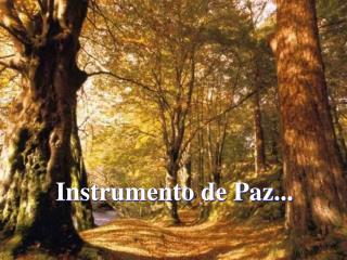 Instrumento de Paz...