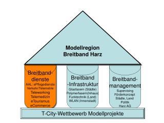 Breitband- dienste AAL: ePflegedienste Verkehr/Telemetrie Teleworking Telemedizin eTourismus