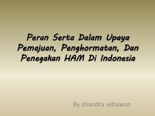 Peran Serta Dalam Upaya Pemajuan, Penghormatan, Dan Penegakan HAM Di Indonesia