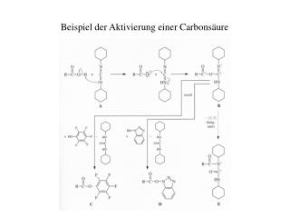 Beispiel der Aktivierung einer Carbonsäure
