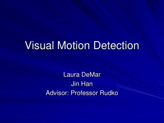 Visual Motion Detection