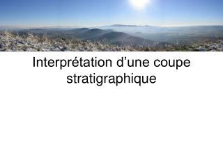 Interprétation d'une coupe stratigraphique