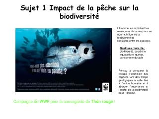 Sujet 1 Impact de la pêche sur la biodiversité