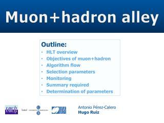Muon+hadron  alley