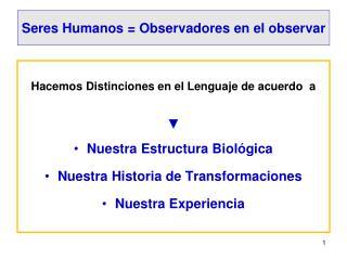 Seres Humanos =  Observadores en el observar