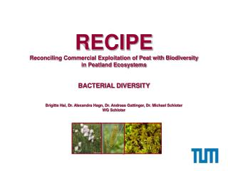 RECIPE Reconciling Commercial Exploitation of Peat with Biodiversity  in Peatland Ecosystems