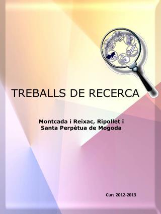 TREBALLS DE RECERCA