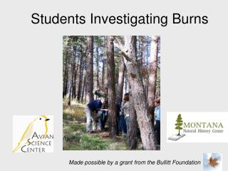 Students Investigating Burns