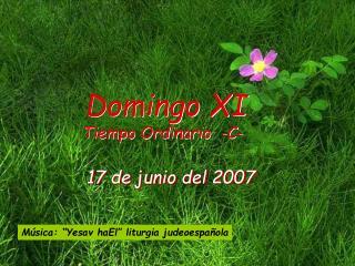 17 de junio del 2007