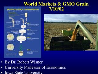 World Markets  GMO Grain