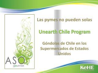 Las pymes no pueden solas  Unearth Chile Program  G ndolas de Chile en los Supermercados de Estados Unidos
