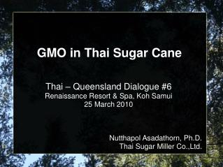GMO in Thai Sugar Cane