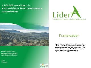 transleader.webnode.hu/orszagtanulmanyok/spanyolorszag-leader-megvalositasa/