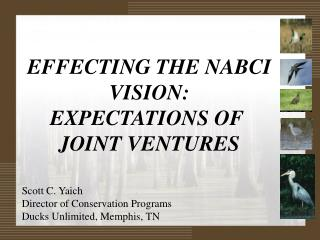 EFFECTING THE NABCI VISION: EXPECTATIONS OF  JOINT VENTURES