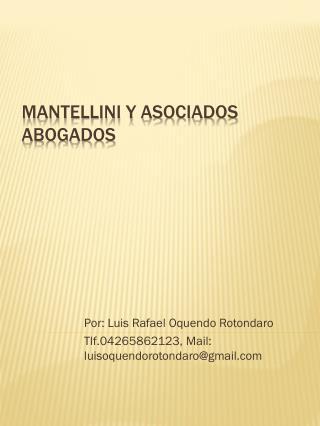 Mantellini y asociados abogados