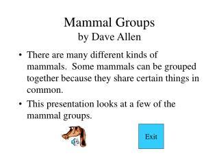 Mammal Groups by Dave Allen