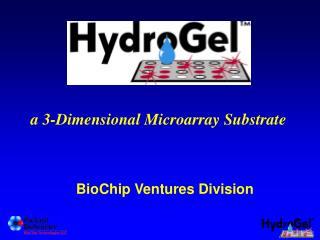 BioChip Ventures Division