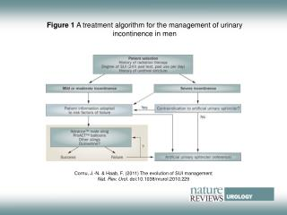 Figure 1  A treatment algorithm for the management of urinary incontinence in men