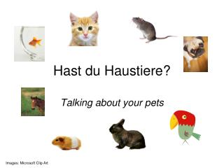 Hast du  Haustiere ?