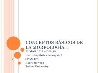 CONCEPTOS BÁSICOS DE LA MORFOLOGÍA 4 23 MAR 2011 – DÍA 28