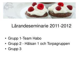 Lärandeseminarie 2011-2012 Grupp 1-Team Habo Grupp 2 - Hälsan 1 och Torpagruppen Grupp 3