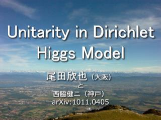 Unitarity in Dirichlet Higgs Model