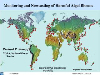 Monitoring and Nowcasting of Harmful Algal Blooms
