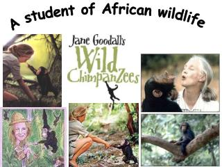 A student of African wildlife