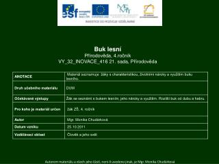Buk lesní Přírodověda ,  4.ročník VY_32_INOVACE_416 21.  sada,  Přírodověda