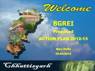 BGREI Proposed  ACTION PLAN 2012-13 New Delhi 25.04.2012