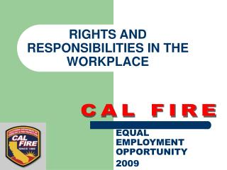 RIGHTS AND RESPONSIBILITIES IN THE WORKPLACE