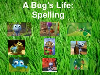 A Bug's Life: Spelling