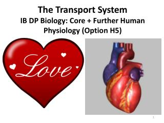The Transport System IB DP Biology: Core + Further Human Physiology (Option H5)